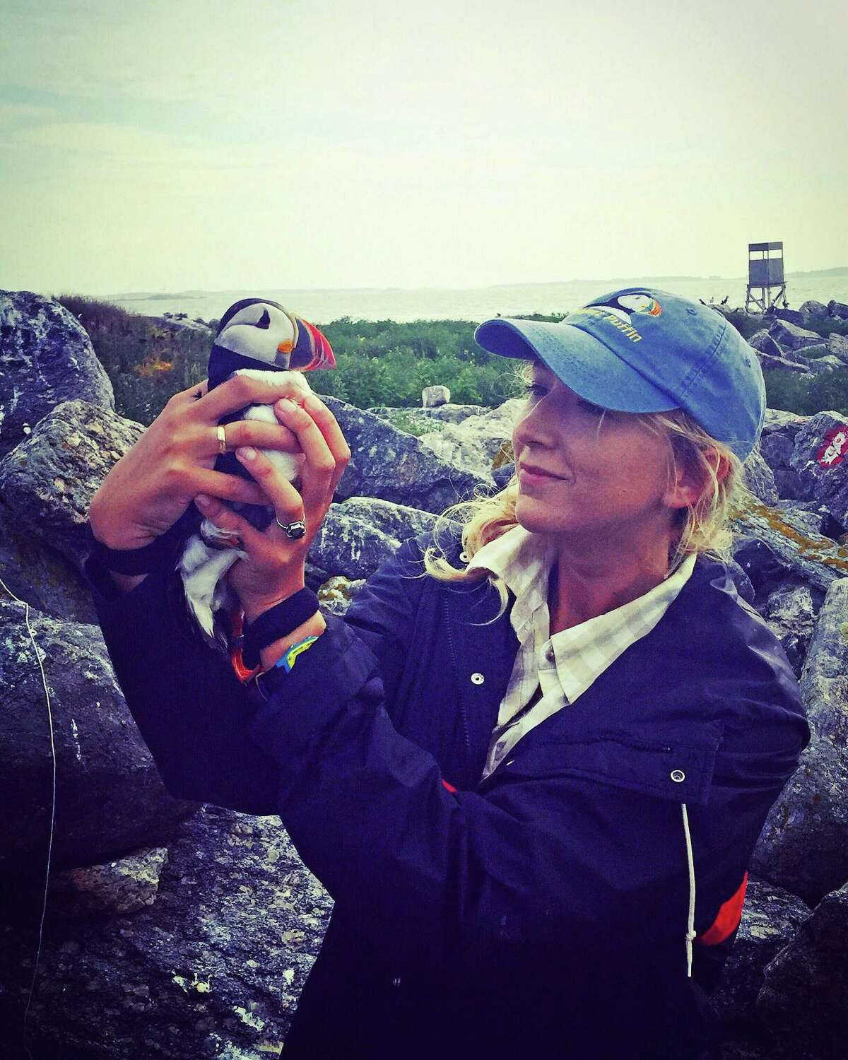Caroline Bailey, a new Greenwich-based intern with Audubon Connecticut, holds a puffin.