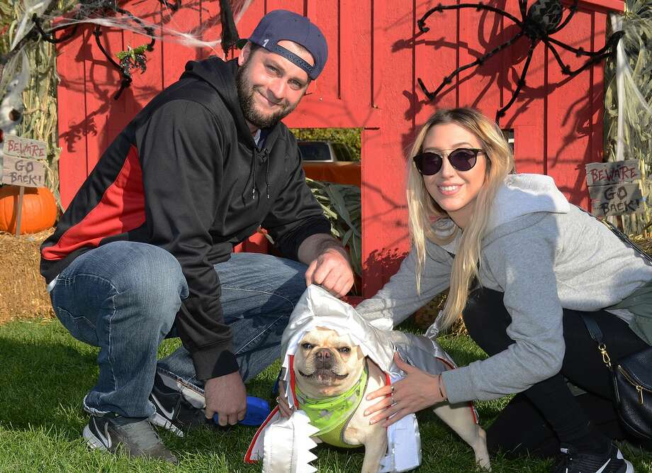The Ridgefield Operation for Animal Rescue (ROAR) held its annual Paws for a Cause festival for dogs and their people sponsored by Blue Buffalo on October 16, 2016. The festival raises funds for the organization. Were you SEEN? Photo: J.C. Martin