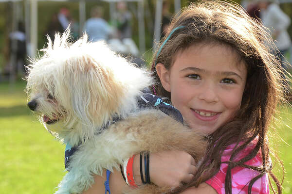 The Ridgefield Operation for Animal Rescue (ROAR) held its annual Paws for a Cause festival for dogs and their people sponsored by Blue Buffalo on October 16, 2016. The festival raises funds for the organization. Were you SEEN?