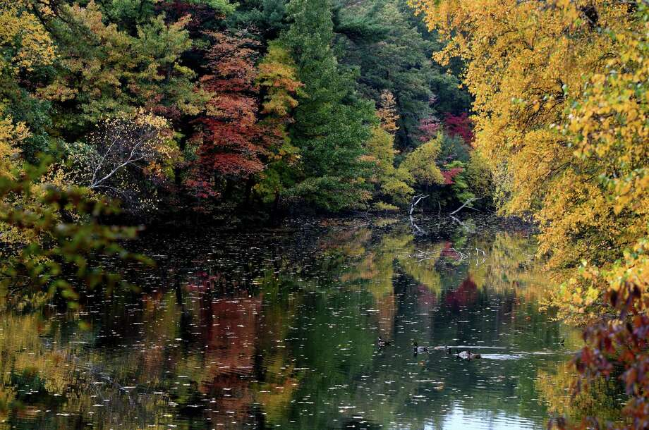 Fall leaves add their rich tones to Rensselaer Lake at Six Mile Waterworks Park on Monday, Oct. 17, 2016,  in Albany, N.Y.  (Will Waldron/Times Union)) Photo: Will Waldron
