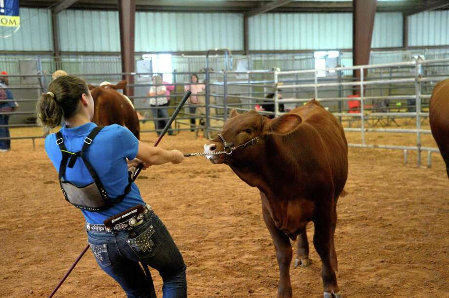 Shown here are exhibitors from last year's Fort Bend County Fair. The fairgrounds will have a new facility for upcoming events when construction is complete on a new hall at the fair grounds. Photo: Craig Moseley, Staff / ©2016 Houston Chronicle