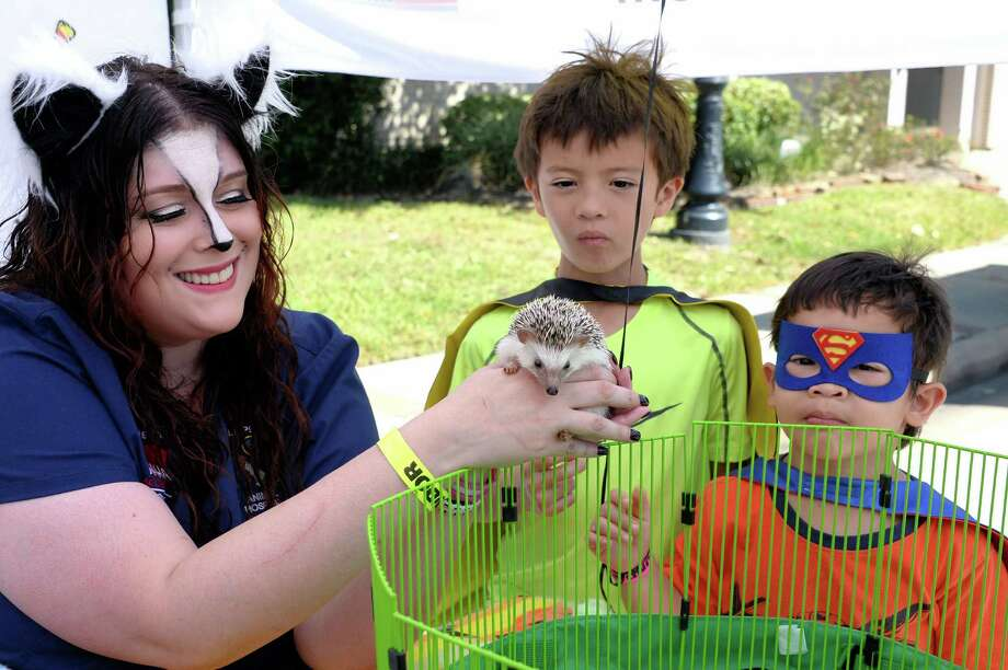 Kristin Boone of All Pets Animal Clinic shows Poe the Hedgehog to Andrew and Jay Jay Summers at the Katy Rice Harvest Festival on Sunday, Oct. 9. The festival celebrates the rice farming history of the community with food and vendor booths and entertainment. This was the 36th annual festival. Photo: Craig Moseley, Staff / ©2016 Houston Chronicle