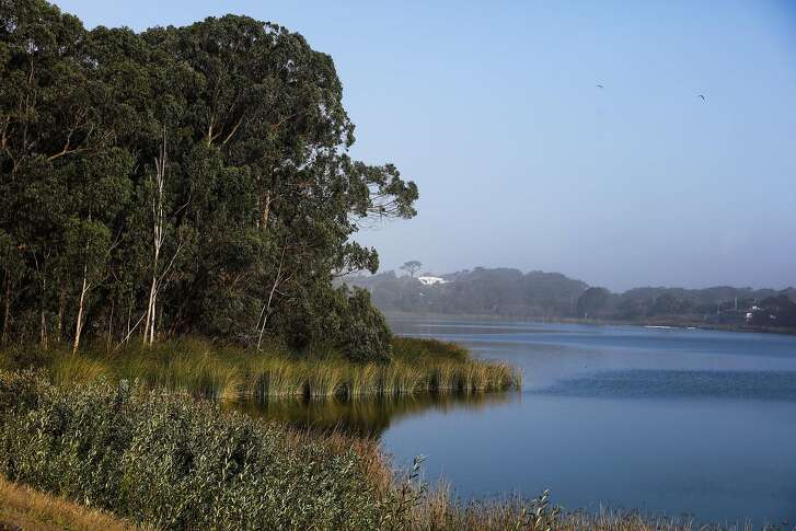 A view of Lake Merced from the former Pacific Rod and Gun Club, in San Francisco, California, on Monday, Oct. 17, 2016. The Recreation and Park Commission will decide whether to lease space at Lake Merced West for a new recreation facility.