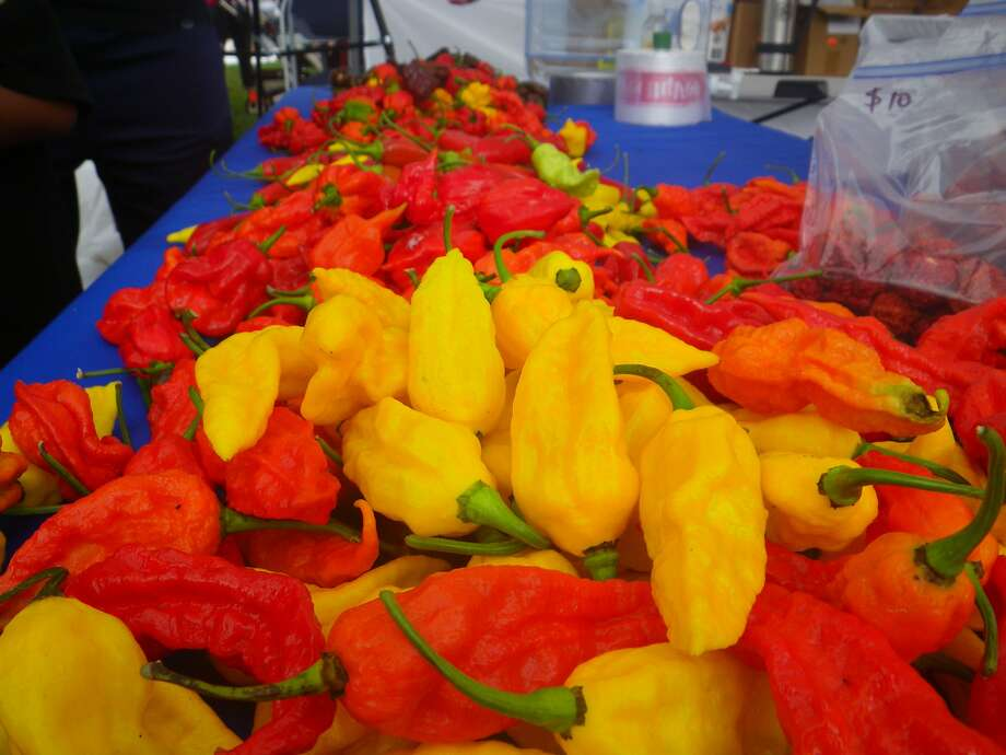 Chili peppers are shown at the Houston Hot Sauce Festival. Photo: Courtesy Photo, Houston Hot Sauce Festival
