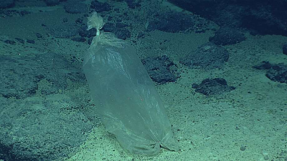 This April 22, 2016 image made available by NOAA shows a plastic ice bag found at the Enigma Seamount, during a deepwater exploration of the Marianas Trench Marine National Monument area in the Pacific Ocean near Guam and Saipan. Dives in the expedition ranged from 250 to 6,000 meters (820 feet to 3.7 miles) deep. Photo: Associated Press