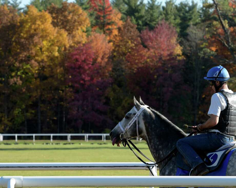 Exercise rider Robert Massey prepares for Frosted's final workout at the Godolphin Training Facility on Wednesday, Oct. 19, 2016, in Saratoga Spring ,  N.Y.   (Skip Dickstein/Times Union) Photo: SKIP DICKSTEIN / 20038431A