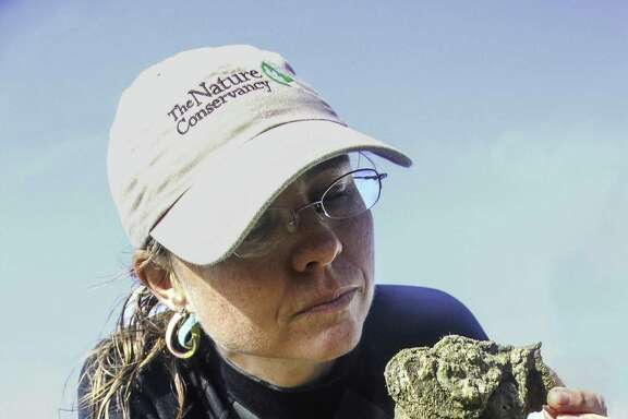 Julie Sullivan of The Nature Conservancy inspects a clump of live oysters from thriving Half Moon Reef, an oyster reef restoration project in Matagorda Bay that has proved a boon to recreational anglers as well as marine life.