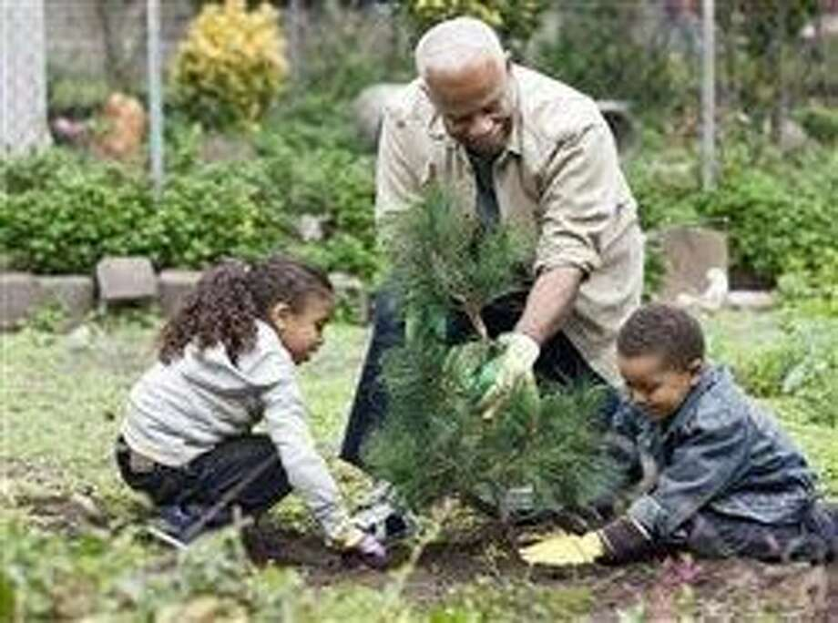 Fall: Best season for planting trees that boost home and community value