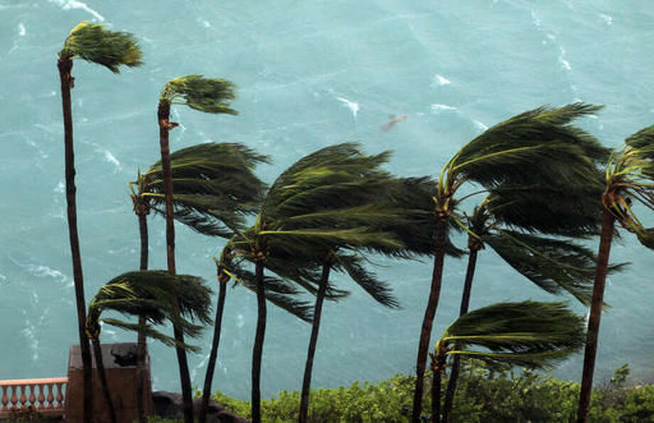 Wind brought by Hurricane Matthew blow palm trees on Paradise Island in Nassau, Bahamas, Thursday, Oct. 6, 2016. The head of the Bahamas National Emergency Management Authority, Capt. Stephen Russell, said there were many downed trees and power lines, but no reports of casualties. (AP Photo/Tim Aylen)