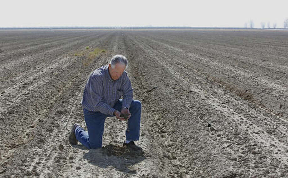 FILE - In this Feb. 25, 2016, file photo, Mike Stearns, chairman of the San Luis & Delta-Mendota Water Authority, checks the soil moisture on land he manages near Firebaugh, Calif. State regulators said Wednesday, Oct. 5, 2016, water conservation continues to slip in drought-stricken California after officials lifted mandatory cutbacks. (AP Photo/Rich Pedroncelli, File)