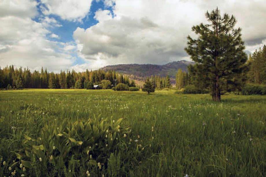 This undated photo provided by The Trust for Public Land shows Ackerson Meadow in Yosemite National Park, Calif. Visitors to the park now have more room to explore nature with the announcement on Wed. Sept. 7, 2016 that the park's western boundary has expanded to include Ackerson Meadow, 400 acres of tree-covered Sierra Nevada foothills, grassland and a creek that flows into the Tuolumne River. This is the park's biggest expansion in nearly 70 years, and will serve as wildlife habitat. (Robb Hirsch/The Trust for Public Land via AP)