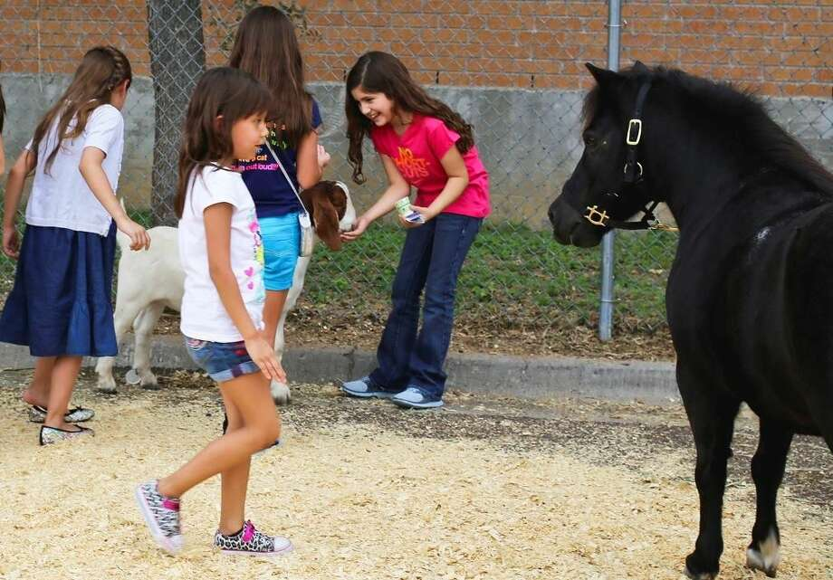 Children feed goats and ponies at the petting zoo at the St. Augustine Jamaica at St. Augustine High School on Sunday afternoon. Photo by Victor Strife