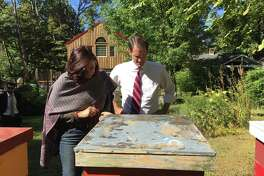 C. Marina Marchese, owner of Red Bee Honey in Weston, shows U.S. Rep. Jim Himes, D-Conn., a beehive Wednesday, Oct. 5, 2016.