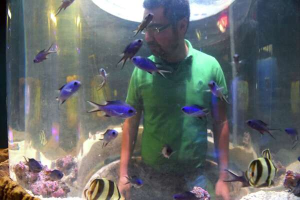 Marketing manager Alan Fanitzi stands in a observation cylinder at the Via Port Aquarium on Friday Oct. 21, 2016 in Rotterdam , N.Y.  (Michael P. Farrell/Times Union)