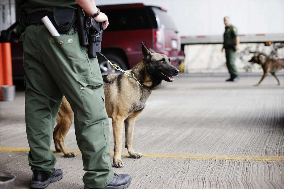 Authorities said that 11 individuals were arrested after a fleeing a checkpoint on Interstate 35 as a K-9 agent approached the vehicle.