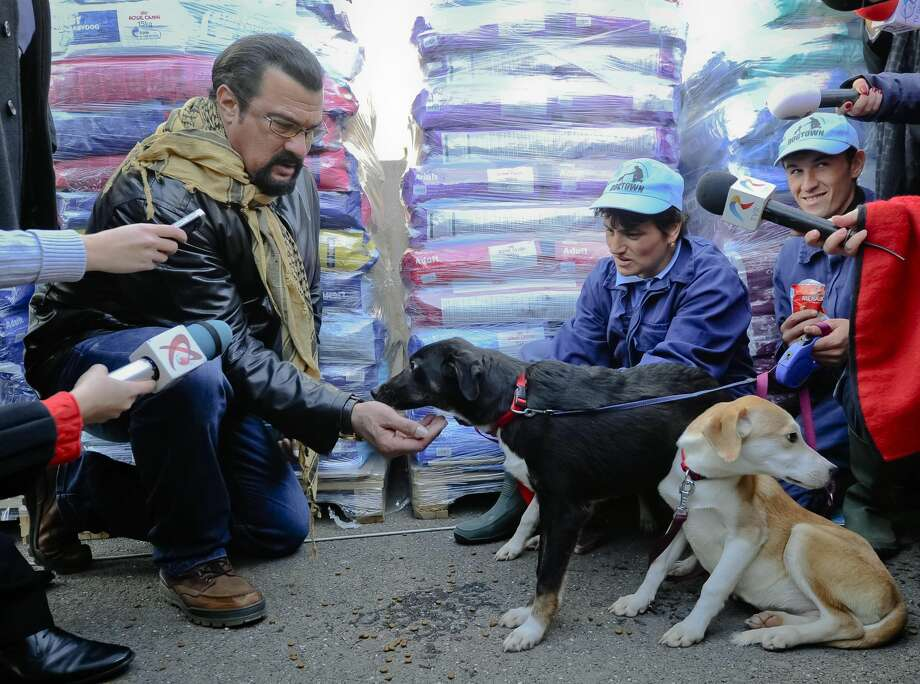 A picture taken on Sunday, Nov. 17, 2013 shows U.S. actor Steven Seagal feeding Grivei, a stray dog he adopted from the Dogtown dog shelter in Uzunu, south of Bucharest, Romania. The dogs have been in the news after a 4-year-old boy was fatally mauled by a stray in August and Parliament passed a law allowing for Bucharest's 64,000 street dogs to be euthanized. Seagal adopted the 7-month-old black puppy in the long distance adoption program, which costs 60 lei ($18) a month. The dog will remain at the shelter. (AP Photo/Cristian Nistor/Agerpres)