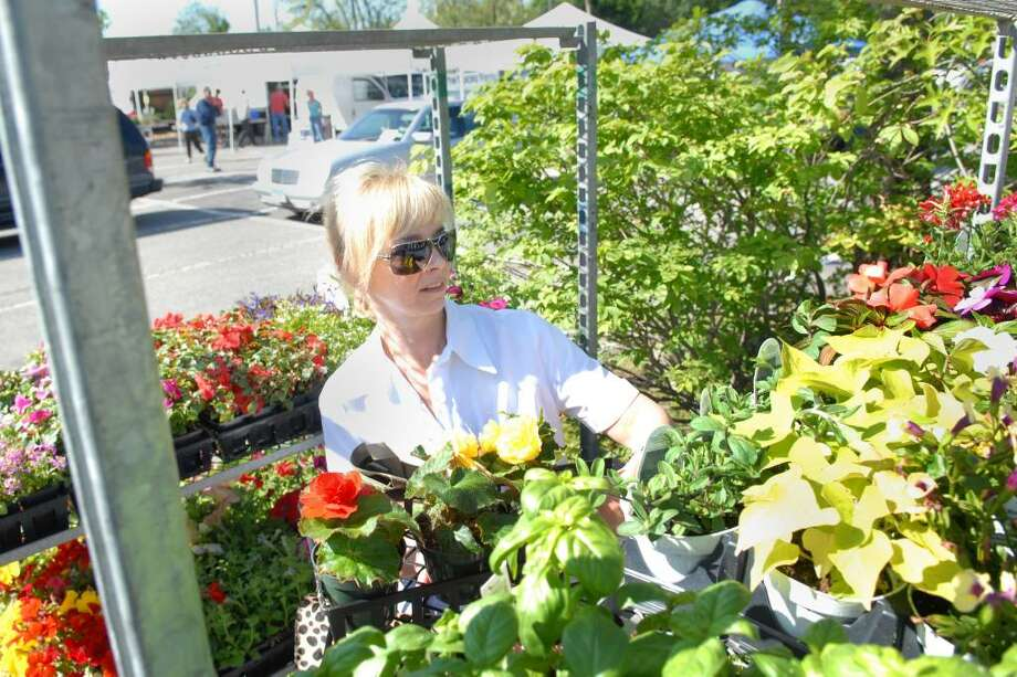 Avril Graham of Cos Cob shops for flowers during the opening day of the Greenwich Farmers Market in the Horseneck public parking lot, Greenwich, Saturday morning, May 15, 2010. Photo: Bob Luckey / Greenwich Time
