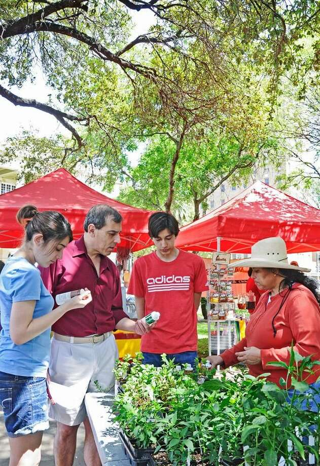 Alejandra Rodriguez shows different type of plants to Sara Garcia, Thomas Garcia Jr and Thomas Garcia III Saturday afternoon at the Centro De Laredo Farmers Market Cilantro Festival at Jarvis Plaza.