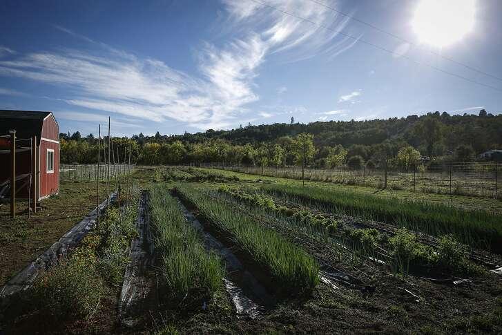 Part of SingleThread Farm is seen on Friday, Oct. 21, 2016 in Healdsburg, Calif.