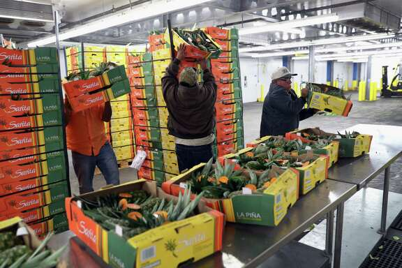 Workers unload Mexican pineapple for inspection by U.S. Customs and Border Protection officers on Oct. 17, 2016 in Laredo, Texas. Agricultural specialists inspect produce coming over Laredo's World Trade Bridge for insects and pests to prevent contamination of U.S.-grown crops. South Texas customs agents processed $166 billion in imports from Mexico last year, with the largest amount coming through Laredo. (Photo by John Moore/Getty Images)