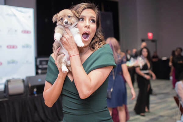 Area celebrities and anybody who is anybody in the Alamo City were at the Witte Museum Saturday night, Oct. 22, 2016, for Eva's Heroes 10th anniversary Celebrity Casino Night. Eva Longoria's organization seeks to help people with intellectual special needs.