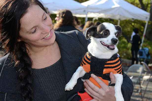 The Pet Pantry Warehouse held its annual Howl and Prowl dog Halloween event on Greenwich Avenue Oct. 23, 2016. Animal lovers and their pets enjoyed a costume contest, pet food samples, free portraits and more. Proceeds benefited Adopt-A-Dog. Were you SEEN?