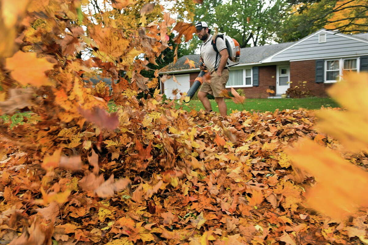 Tom Phibbs of Tom Phibbs Lawn Care blows fallen leafs off the lawn of a home on Friday Oct. 20, 2016 in Brunswick , N.Y. (Michael P. Farrell/Times Union)
