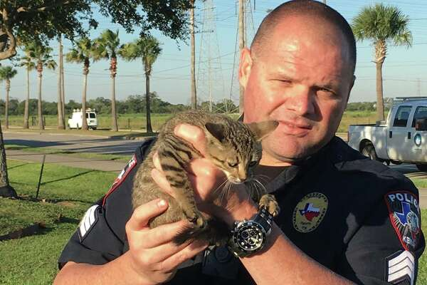 Kemah Police Sgt. Jerry Barmore holds the rescued kitten on Friday, Oct. 21, 2016.