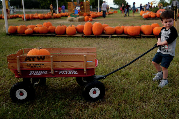 Lawson Green, 3, pulls a wagon with his family's pumpkin at Wesley United Methodist Church's pumpkin patch on Monday evening. The patch, now in its 21st year, is a fundraiser for the church's youth program. The patch is open daily from 9 a.m. to 8 p.m. through Halloween.  Photo taken Monday 10/24/16 Ryan Pelham/The Enterprise
