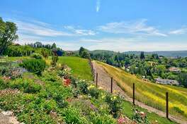 244 Claudia Court rests on the largest residential lot in Moraga.�