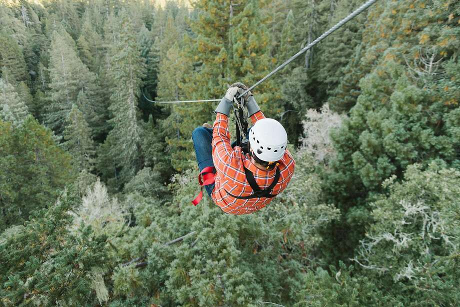 Ziplining through the redwoods with Sonoma Canopy Tours. Photo: Sonoma Canopy Tours