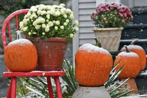 Fresh snow decorates a Halloween display in the yard of a Tibbits Ave, home Thursday Oct. 27, 2016 in Troy, NY.  (John Carl D'Annibale / Times Union)