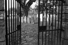 Views: The Old Burying Ground on Beach Road, Fairfield.