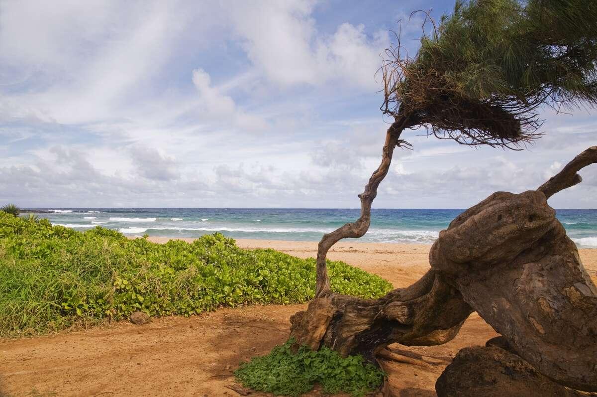 Kealia Ohaiis named after a beach in Hawaii. Her father, a native Hawaiian, named Kealia after a beautiful and popular surfing beach on the island of Kauai.
