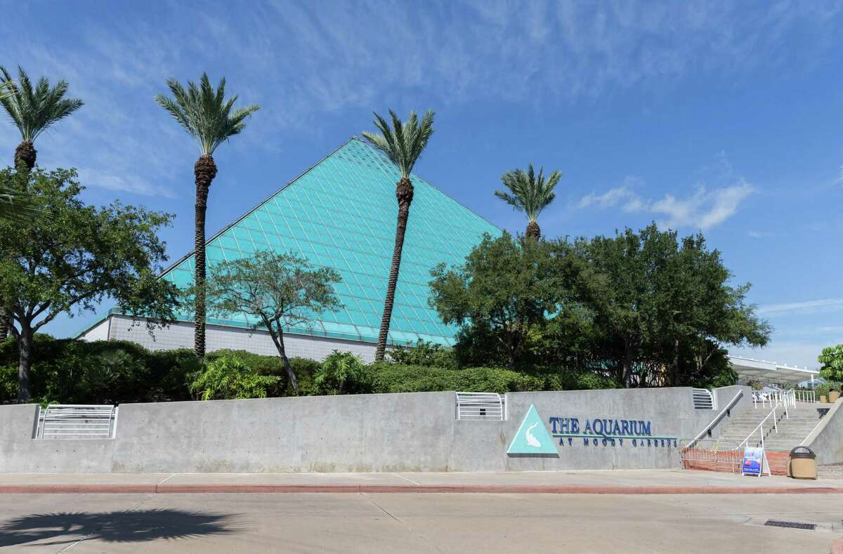 Moody Gardens is hosting the drive-thru pick-up in the west parking lot behind the Aquarium Pyramid located off One Hope Boulevard in Galveston.