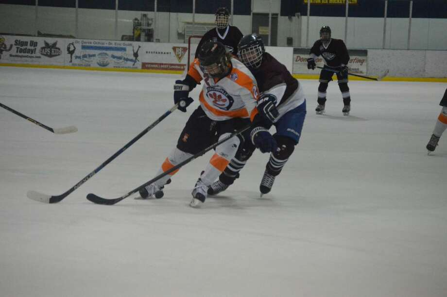 Edwardsville's Tyler Hinterser shields a defenseman away from the puck during the second period.