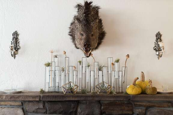Brad Briske's restaurant Home features unique decoration  in Soquel, Calif. on Monday, Oct. 31, 2016. Briske recently opened his restaurant where two other fine dining establishments used to be.