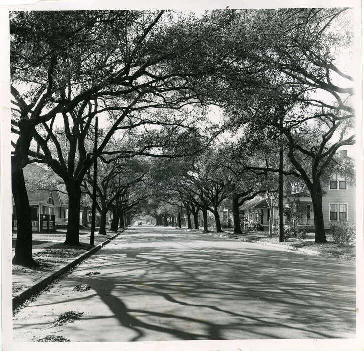 HOUSTON HEIGHTS 1956 Bayland Avenue -- Houston 02/21/1956