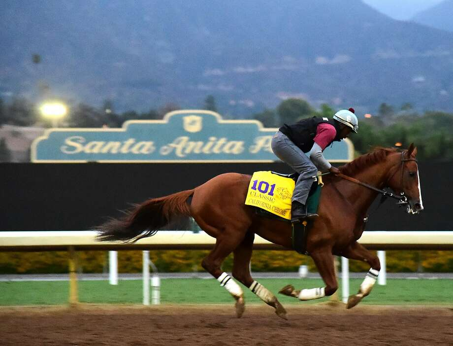 California Chrome trains at Santa Anita. Chrome is the even-money favorite for Saturday's $6 million Breeders' Cup Classic. He has a North American-record $13,432,650 in earnings. Photo: Harry How, Getty Images