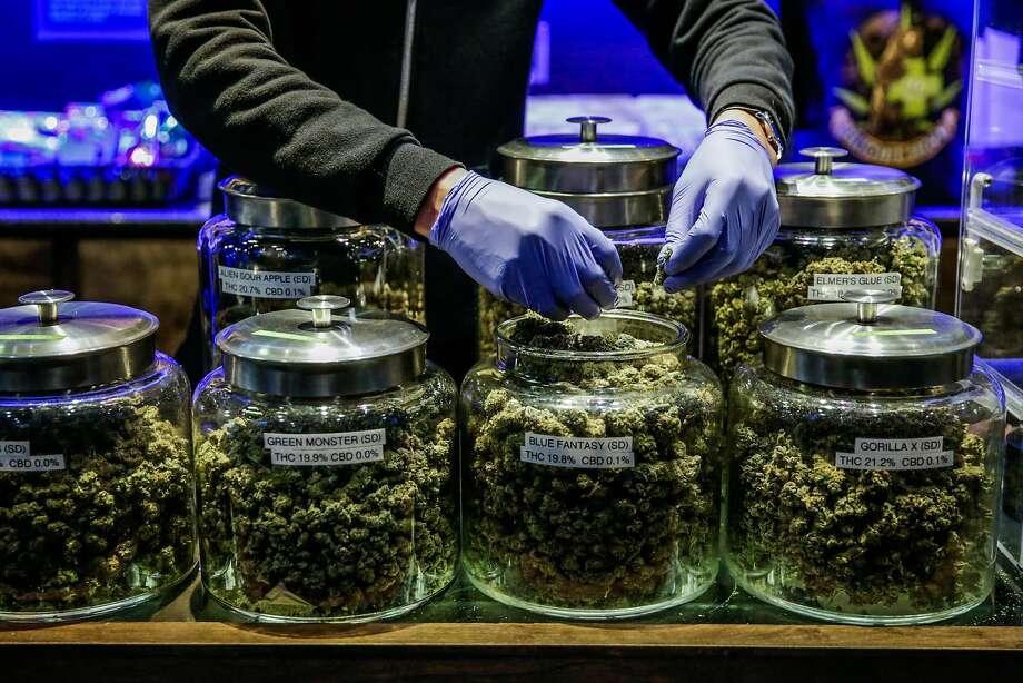 Budtender Alejandro Garcia (center), prepares an order of marijuana at cannabis dispensary The Green Cross, in San Francisco, California, on Tuesday, Nov. 1, 2016. Photo: Gabrielle Lurie, The Chronicle