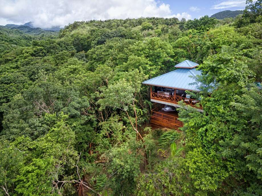 An aerial view of treehouse lodging at Secret Bay Resort in Dominica. Photo: Secret Bay/Bloomberg