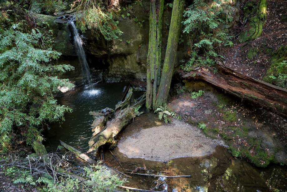 The delicate Sempervirens Falls offers scenic viewing on the Sequoia Trail, one of the range of hiking options, for all levels, in Big Basin Redwoods State Park. Photo: James Tensuan, Special To The Chronicle