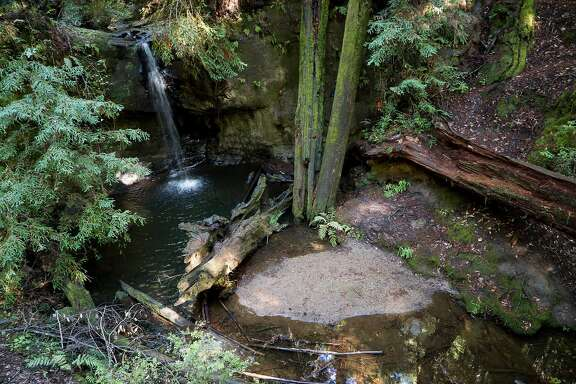 The Sempervirens Falls is seen near the Sequoia Trail in Boulder Creek, Calif. on Wednesday, Nov. 2, 2016. Big Basin features trails for all levels of hikers.