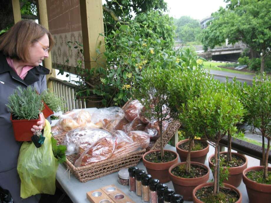 With her hands full of fresh herbs, Barbara Bishop who manages marketing and communication for the Greenwich Historical Society takes advantage of organically grown produce and freshly baked at the Green Market. Photo: Anne W. Semmes / Greenwich Citizen