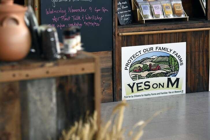 A sign supporting Measure M is seen inside the Petaluma Seed Bank in Petaluma, CA, November 3, 2016.