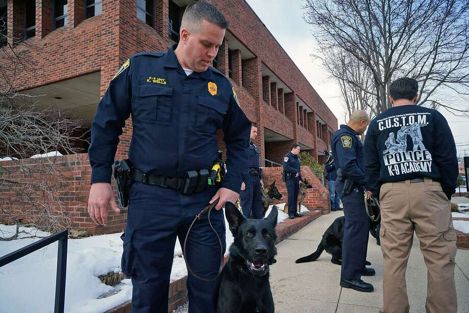 Officer Kevin Wells and his new canine partner, Jagger, following a graduation ceremony Thursday. Photo: Genevieve Reilly / Genevieve Reilly / Fairfield Citizen