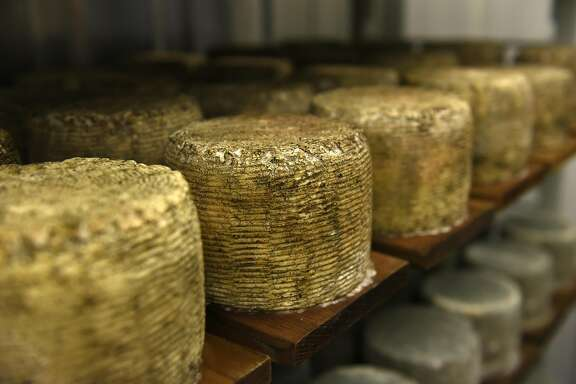 Wheels of Buff Blue cheese sit on racks in the Blue Cheese aging room at Bleating Heart Cheese in Tomales, CA, November 3, 2016.