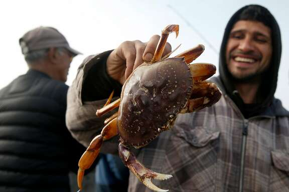 Miguel Linares shows off the prize he snared at around 3:30 a.m. from the municipal pier on the first day of the recreational Dungeness crab season in Pacifica, Calif. on Saturday, Nov. 5, 2016. Despite all of the enthusiasm, veteran crabbers say conditions were less than ideal as heavy surf continually pounded the pier.