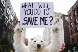 """(FILES) This file photo taken on July 18, 2016 shows an anti-global warming protester holding up a placard in Cleveland, Ohio, near the Republican National Convention site. Diplomats gather next week for a fresh round of UN climate talks in Marrakesh, but all eyes will be on America where presidential elections may be what determine the planet's future. Republican nominee Donald Trump, who has described global warming a """"hoax"""", said in May he would """"cancel"""" the climate-rescue Paris Agreement if elected leader of the free world. Should his threats be taken seriously? / AFP PHOTO / JIM WATSONJIM WATSON/AFP/Getty Images"""