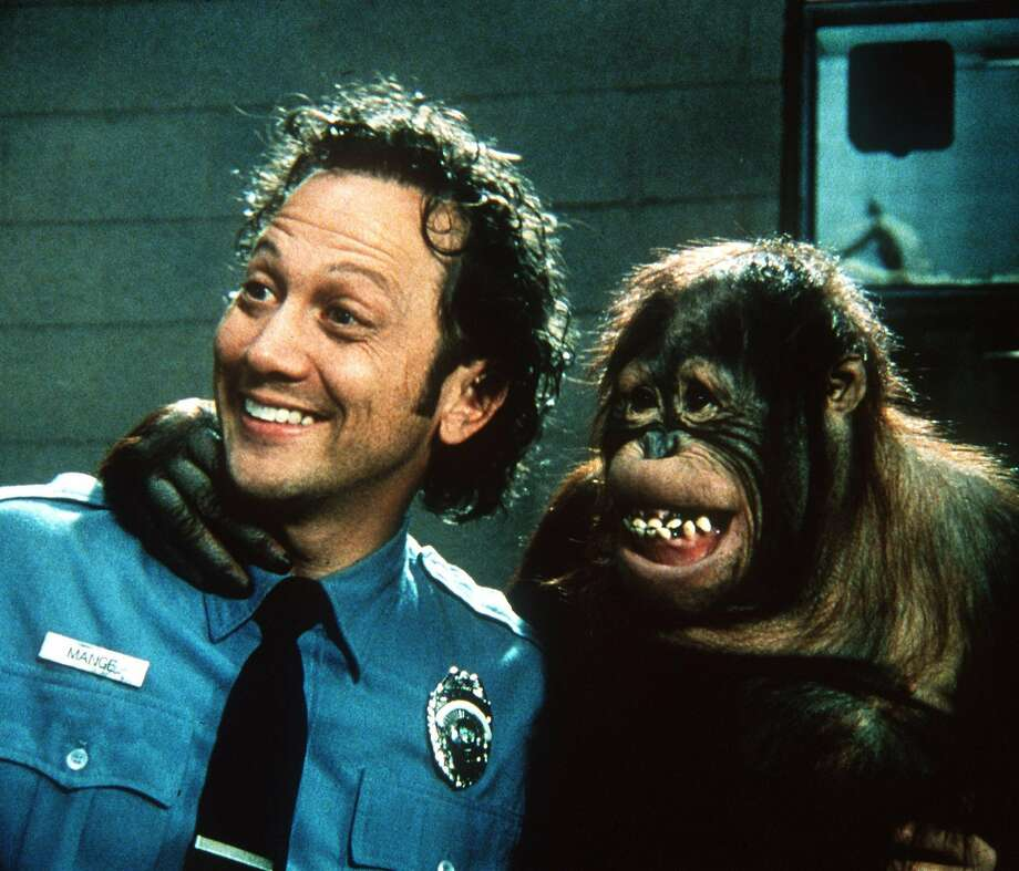 "Rob Schneider (left) and an orangutan in ""The Animal."" Photo: FRANK MASI, AP"